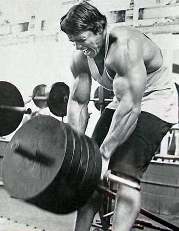 Arnold-Schwarzenegger-t-bar-row